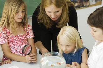 Cert 3 in Child Care Trainer Profile